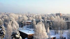 Белый заморозок покрыл деревья Панорама утра зимы города сток-видео