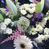 Белый и голубой букет цветка стоковое изображение rf