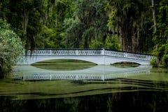 Белый идя мост Стоковые Фотографии RF
