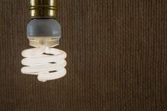 Белый конец-вверх электрической лампочки CFL Стоковое Изображение