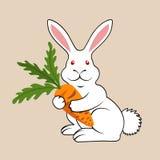 Белый кролик с морковью Стоковые Изображения