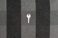Белый ключ на клетке Стоковое Фото