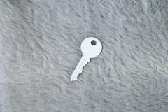 Белый ключ на мехе Стоковые Фотографии RF