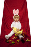 Белый маленький зайчик и его яичка Стоковое Изображение RF