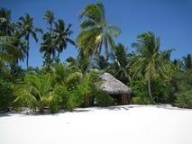 Белый мальдивский пляж Стоковое Изображение