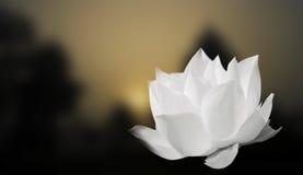 Белый лотос на предпосылке нерезкости Стоковые Фотографии RF