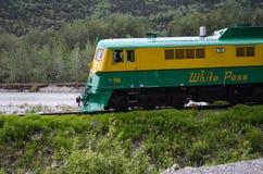 Белый поезд пропуска Стоковая Фотография RF
