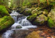 Белый поток Стоковое Фото
