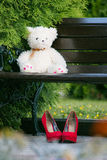 Белый плюшевый медвежонок на деревянной скамье в парке стоковое изображение
