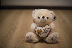Белый плюшевый медвежонок Стоковые Фотографии RF