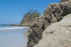 Белый пляж Коста-Рика стоковое фото rf