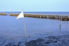 Белый развевая флаг Стоковая Фотография RF