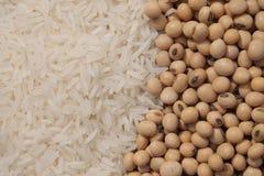 Белый рис и сои Стоковые Фотографии RF