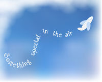 Белый самолет на предпосылке голубого неба Стоковое фото RF