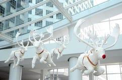 Белый северный олень куклы стоковая фотография