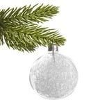 Белый серебряный шарик рождества, вися от ветви сосны Стоковое Изображение