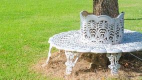 Белый стул литого железа построенный в круге вокруг дерева Стоковая Фотография RF