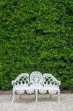Белый стул литого железа с предпосылкой куста Стоковая Фотография RF