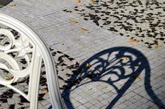Белый стул и своя голубая тень в осени Стоковое Изображение RF