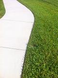 Белый тротуар окаимленный с травой Стоковое Фото