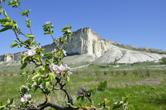 Белый утес в Крыме, красивой горе Стоковая Фотография RF