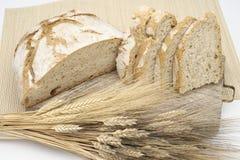 Белый хлеб с кукурузными початками Стоковая Фотография RF