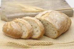 Белый хлеб с кукурузными початками Стоковые Фотографии RF
