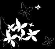 Белый цветок и бабочка на черной предпосылке Стоковое Изображение