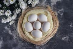 Белый цыпленок eggs в гнезде пасхи на серой предпосылке Взгляд сверху Стоковые Фото