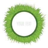 Белый шаблон рамки круга на поле травы Декоративная иллюстрация вектора Стоковое фото RF