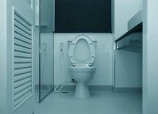 Белый шар туалета Стоковые Фото