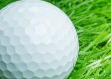 Белый шар для игры в гольф на траве стоковая фотография rf