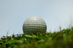 Белый шар для игры в гольф Стоковые Фотографии RF