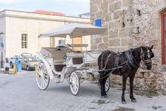 Белый экипаж обузданный черной лошадью стоит на улице города Стоковое Изображение