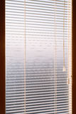 Белый jalousie с пылью и паутинами Через свет утра падений прокладки jalousie внутри дома Солнце весны дает свой li Стоковые Изображения RF