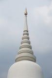 Белый Pagoda Стоковые Изображения