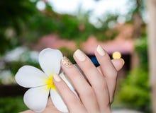 Белый plumeria в женской руке с ярким желтым цветом Стоковые Фото