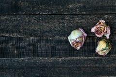 Белым розы высушенные пинком на деревянном столе Стоковые Изображения RF
