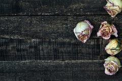 Белым розы высушенные пинком на деревянном столе Стоковая Фотография RF