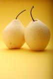 2 белых груши - съемка студии Стоковое фото RF