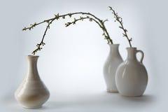 3 белых керамических вазы с весной разветвляют на светлой земле Стоковые Изображения RF