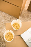 2 белых коробки лапшей Стоковые Фотографии RF