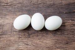 3 белых пасхального яйца Стоковое Изображение