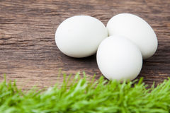 3 белых пасхального яйца Стоковые Фото