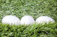 3 белых пасхального яйца Стоковое Фото