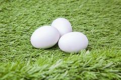3 белых пасхального яйца Стоковое Изображение RF