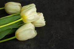 4 белых тюльпана на старой каменной таблице Стоковые Фотографии RF