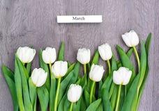 10 белых тюльпанов к праздник весны Стоковое фото RF