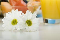 2 белых цветка на таблице Стоковое Фото