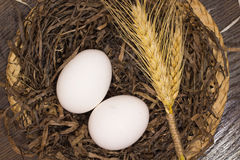 2 белых яичка и пшеницы в гнезде Стоковые Изображения RF